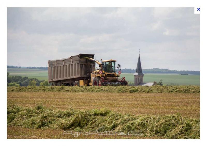 Petite histoire de l'énergie, son rôle en agriculture dans l'histoire - Page 2 668605foin2