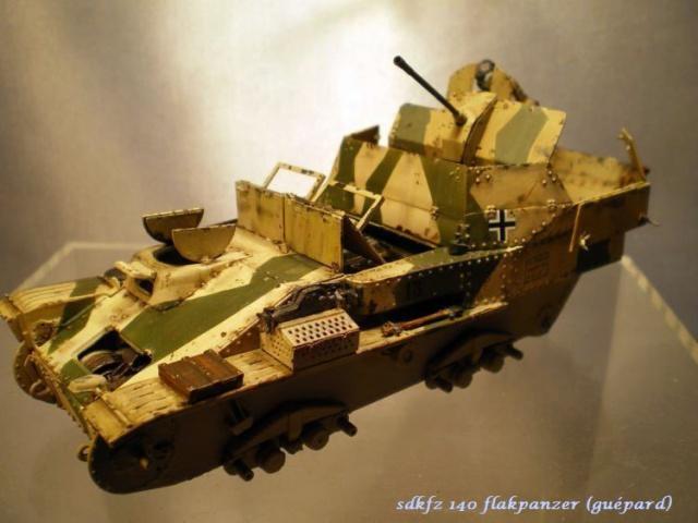 sd.kfz 140 flakpanzer (gépard) maquette Tristar 1/35 668798IMGP3196