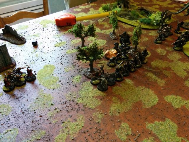Mordor vs Arnor/Royaumes sylvestres 1000pts 668959IMG20150627162532