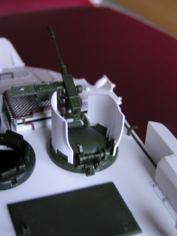 Arisgator, char amphibie Italien moderne 669492PICT0351