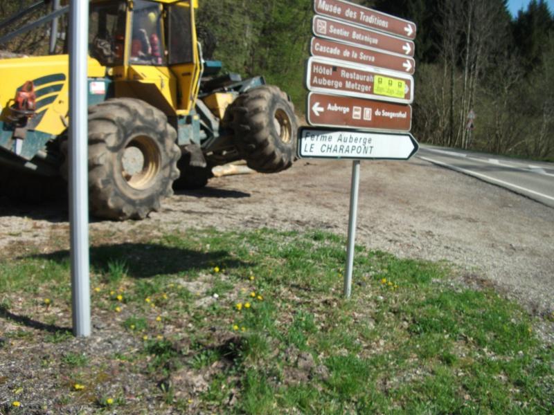Du débardage dans les Vosges, à Hauteur de Schirmeck 670364013