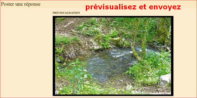 """insertion - Tuto - Insertion d'un diapo """"picasa"""" 671373837"""
