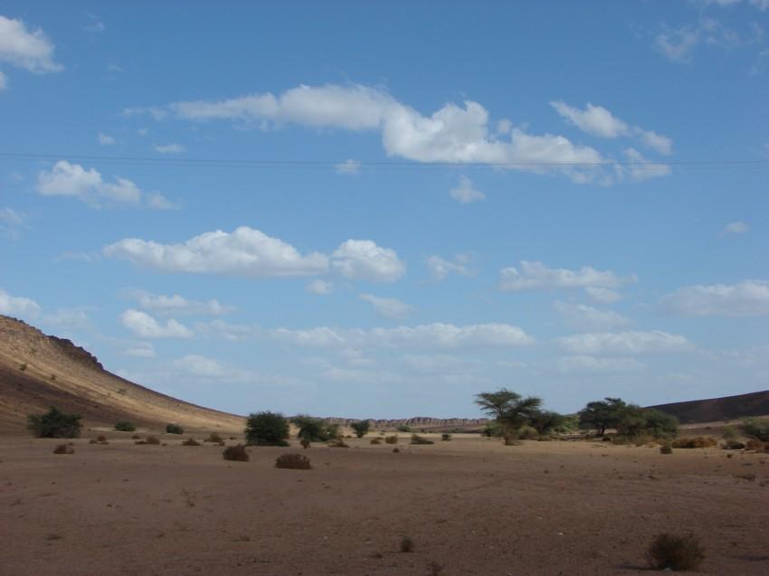 retour maroc 2012 - Page 2 673023118