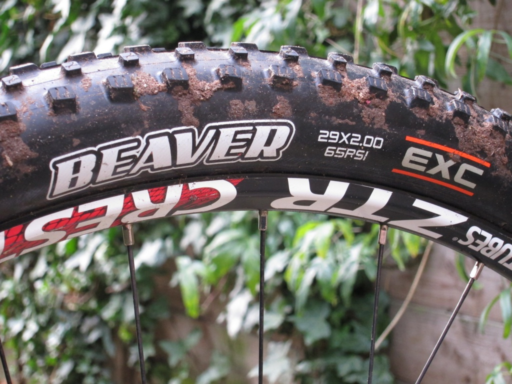 MAXXIS - Page 5 6733862IMG5622