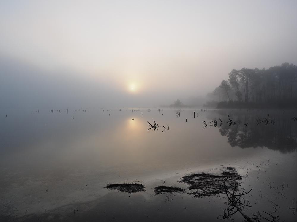 matin sur le lac. 677260PA0500432