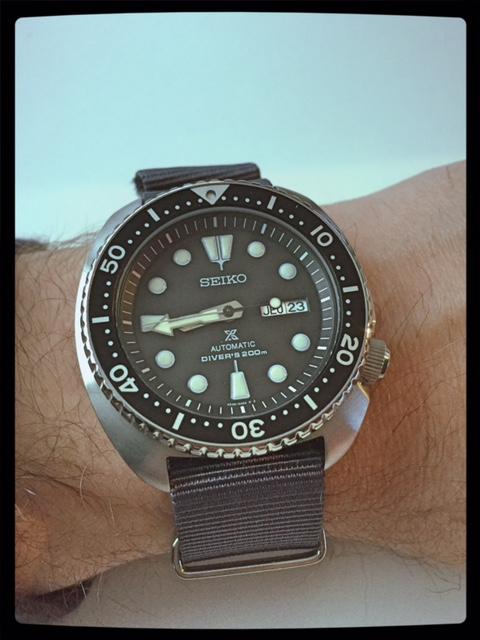 Votre montre du jour - Page 10 680376TurtleSRP77718