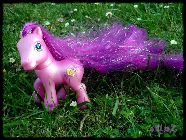 Les petits poneys de sOoZ - G1 à G5 681488P1140844