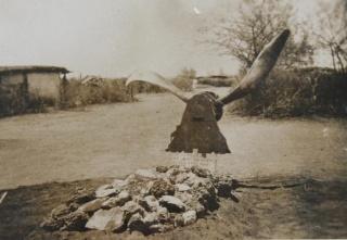 Combats Aérien sur la Corne de l'Afrique 684595372