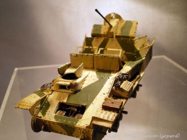 sd.kfz 140 flakpanzer (gépard) maquette Tristar 1/35 684941IMGP3095