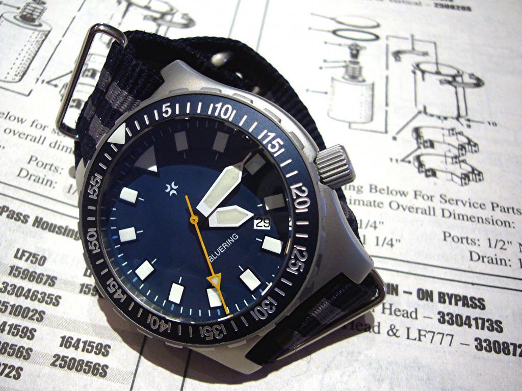 Aimez vous les bleues???!!!  - Page 2 689669bluering_fleetguard
