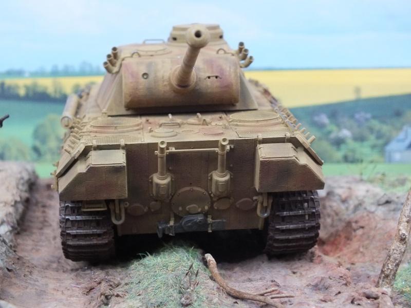 Panther Ausf D Dragon 1/35 avec Zimmerit réf. 6428 (FIN  DE PATINE , finitions lors de la  mise en place sur Dio) - Page 3 690369DSCF6426