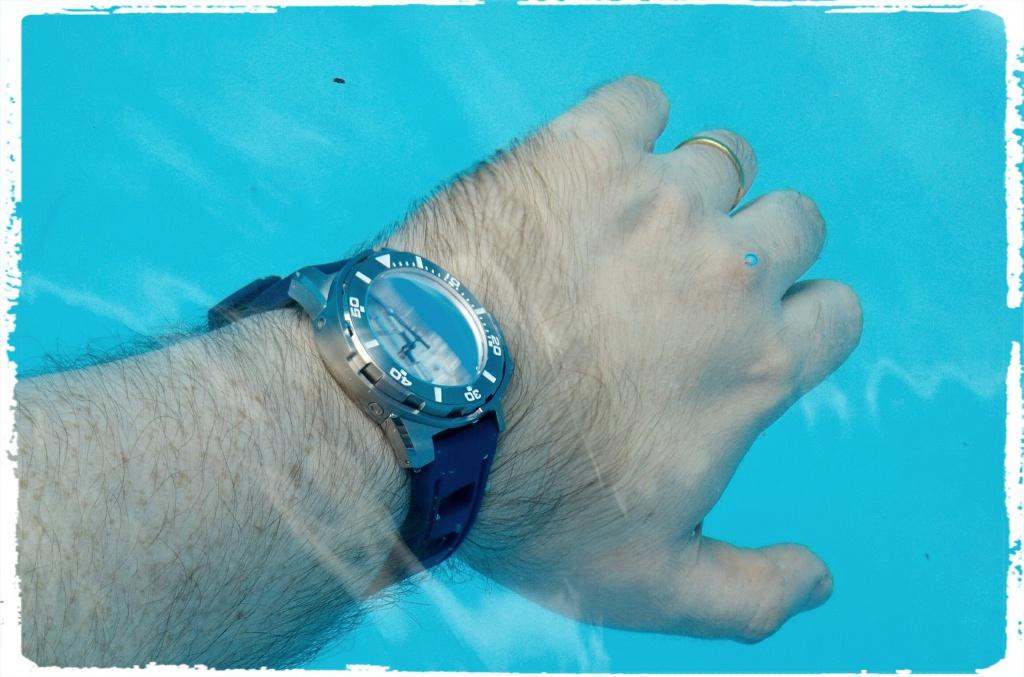 Borealis Sea-Dragon et Scorpion-Fish 691246Fotor143898852096044