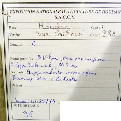 exposition d'aviculture Foire ST MATTHIEU 27 et 28 Septembre 2014 - Page 3 691776P1150603