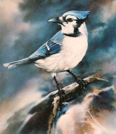 Tubes rapasse et oiseaux 697494Mellmelgibson124