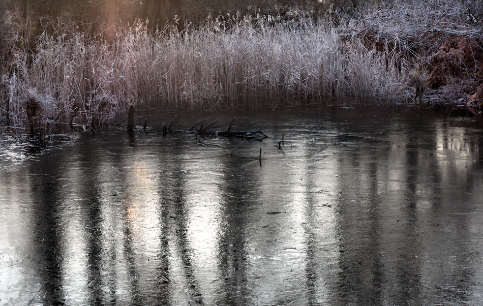 froid matin.( +suite) 700812P1260015
