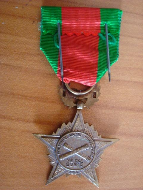 LES DÉCORATIONS AU CHOC 1943-1945. 704077RhinDanube2