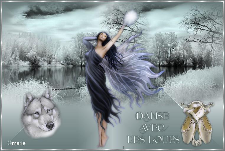 Danse avec les loups(pfs) 708096danseaveclesloups