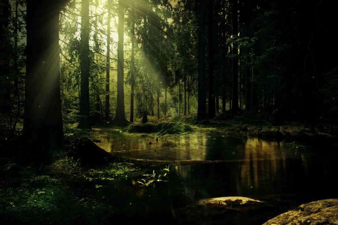 L'étang miroitant
