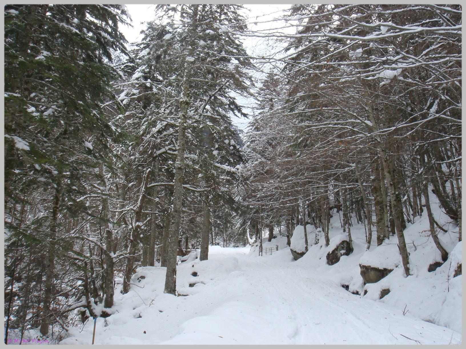Une semaine à la Neige dans les Htes Pyrénées - Page 2 717886DSC011869