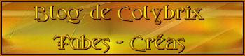 Suite de Bannières AMIS 723894PqAPoAGrGaKhiFDkR8pIV8vxui0