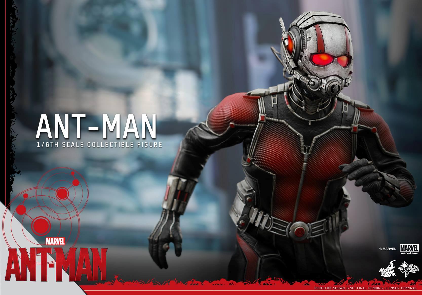 HOT TOYS - Ant-Man - Ant-Man 725148104