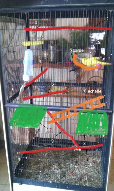 Grand besoin de conseils pour aménagement de la cage :) 727497WP2014060300622222