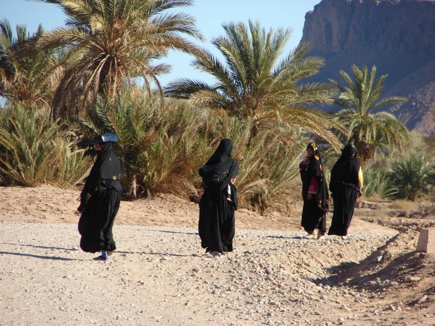 retour maroc 2012 - Page 2 732265155