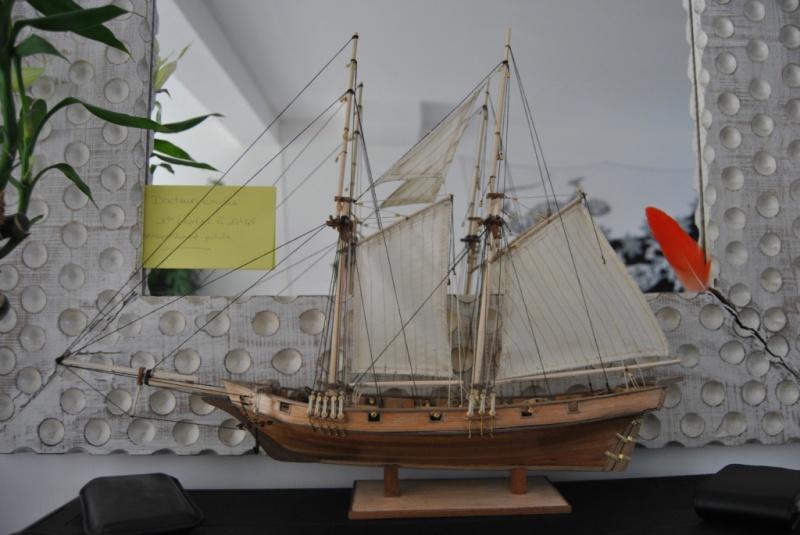 L'albatros kit de constructo - Page 4 733288DSC7960