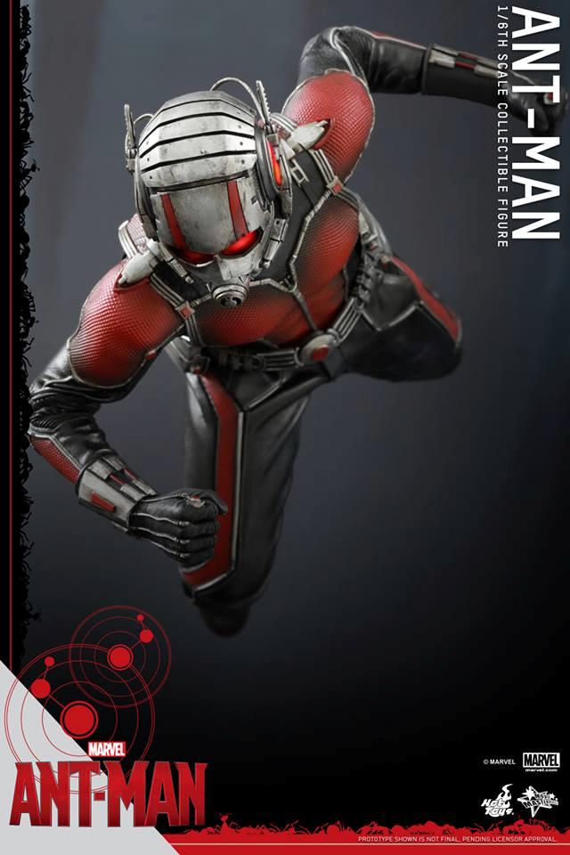 HOT TOYS - Ant-Man - Ant-Man 733566110