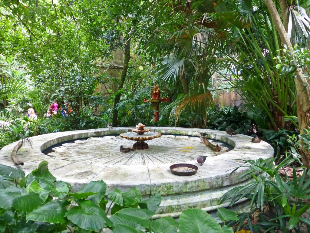 Une lune de miel à Orlando, septembre/octobre 2015 [WDW - Universal Resort - Seaworld Resort] - Page 5 738447P1160656