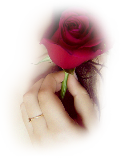 Tubes roses 7393873559b3ae