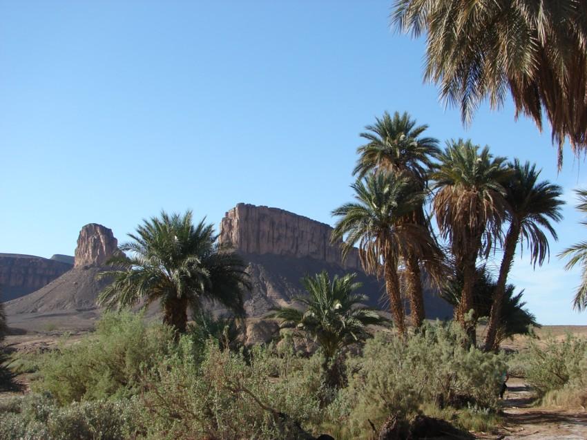 retour maroc 2012 - Page 2 741200140