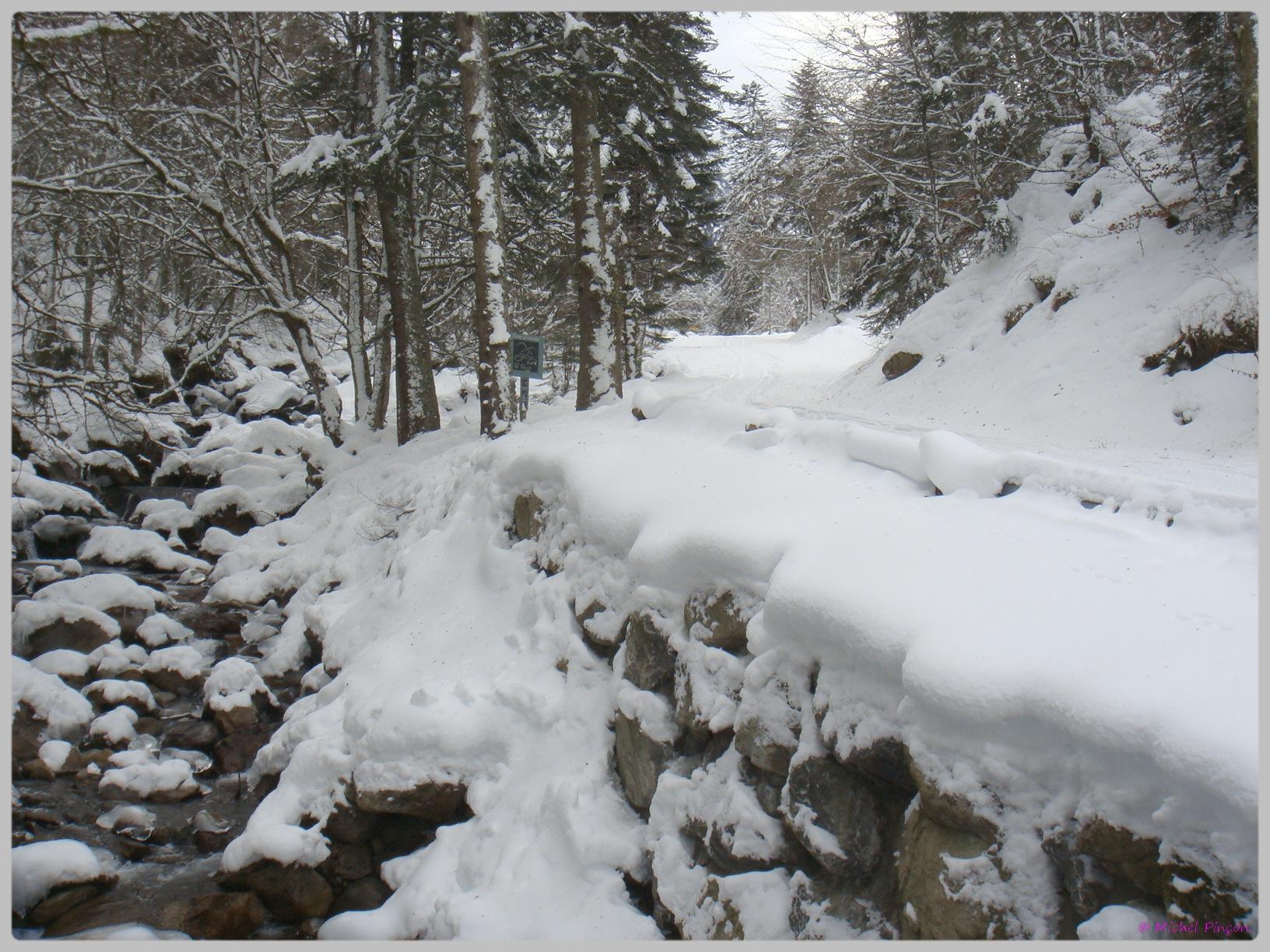 Une semaine à la Neige dans les Htes Pyrénées - Page 2 747701DSC011872