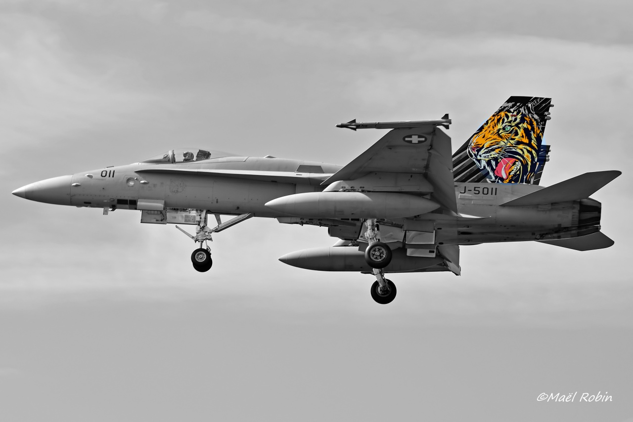 NATO Tiger Meet 2017 Landivisiau 753622landirns1129