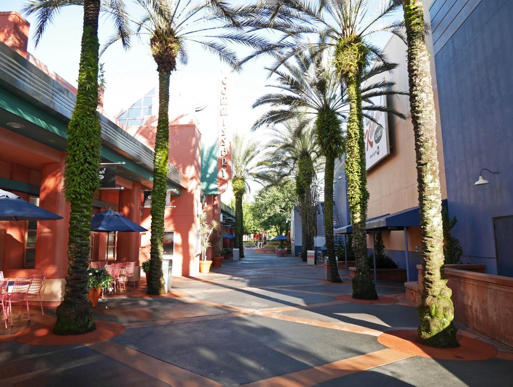 Une lune de miel à Orlando, septembre/octobre 2015 [WDW - Universal Resort - Seaworld Resort] - Page 6 754981P1020939