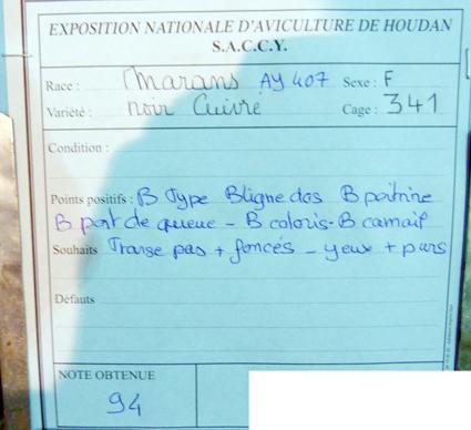 exposition d'aviculture Foire ST MATTHIEU 27 et 28 Septembre 2014 - Page 3 763939P1150695