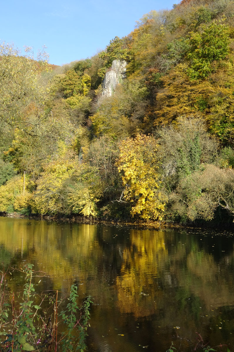 Couleurs d'automne... 770413HONY26101504