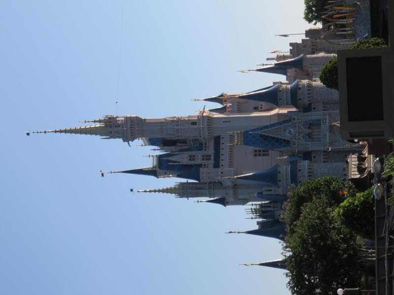 Walt Disney World + Universal Studios + Sea World + Busch Gardens Summer 2014 - Page 4 780214IMG0769