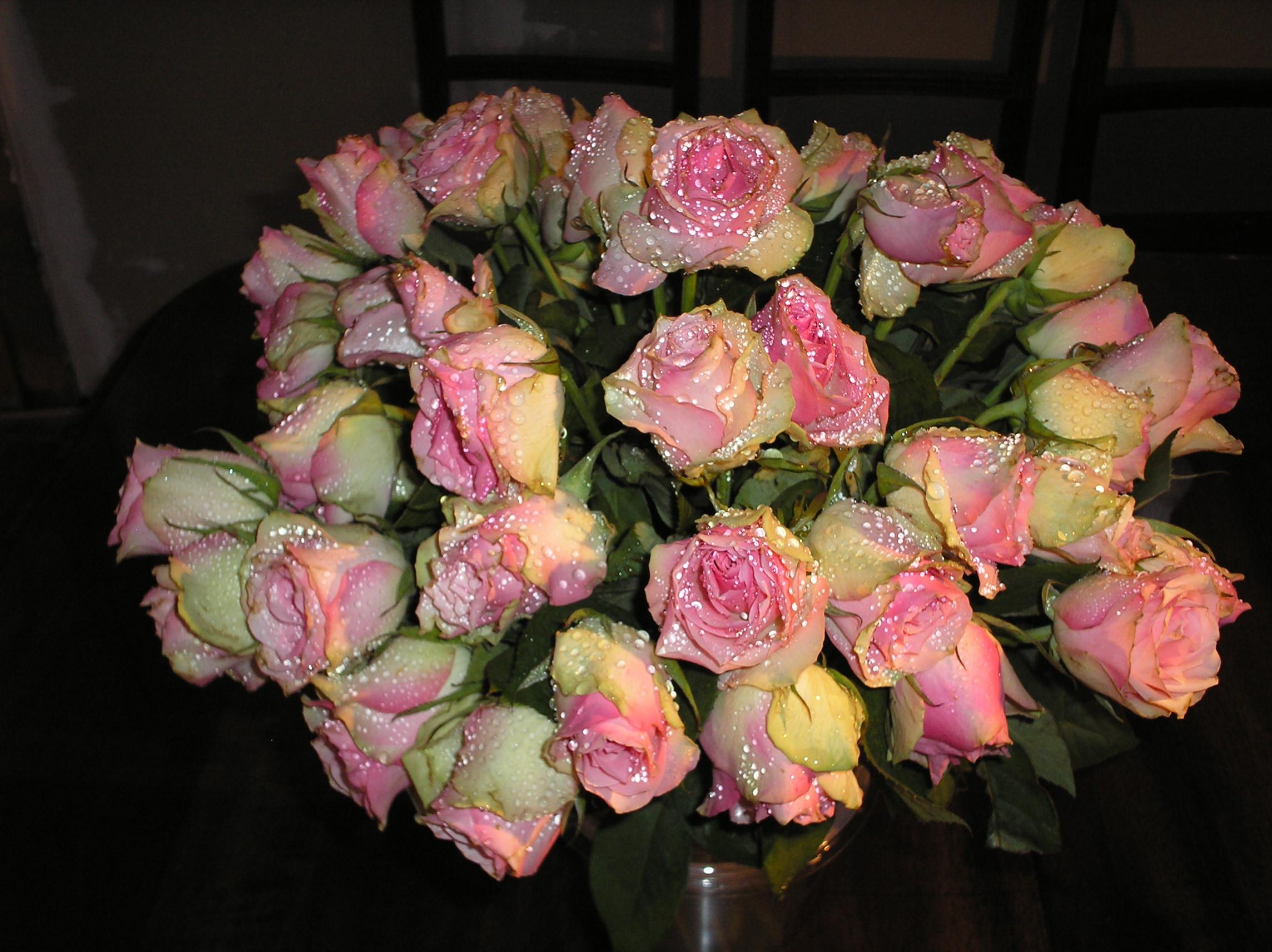 un cadeau d'anniversaire de mariage pour Lolo 784948P4041928