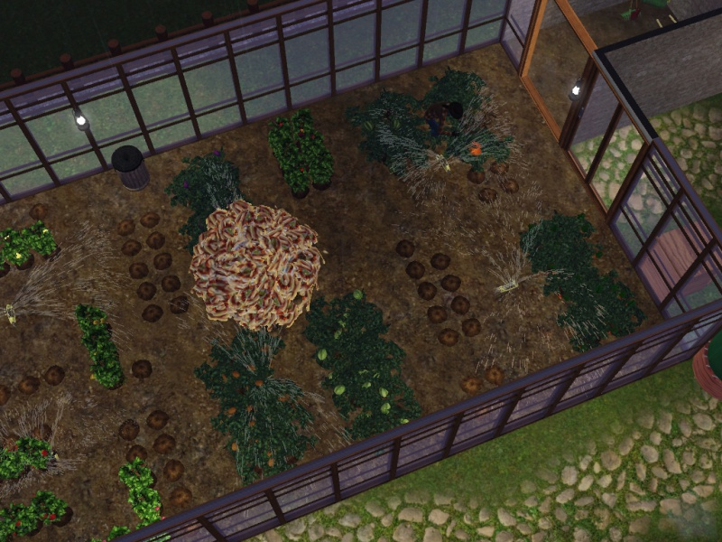 [Challenge] Bienvenue à la Ferme - Page 7 785385Screenshot192