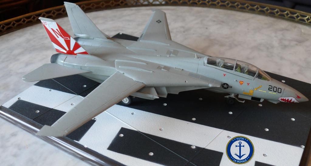 """F-14 Tomcat VF-111 """"Sundowners"""" 786003tomcat1"""