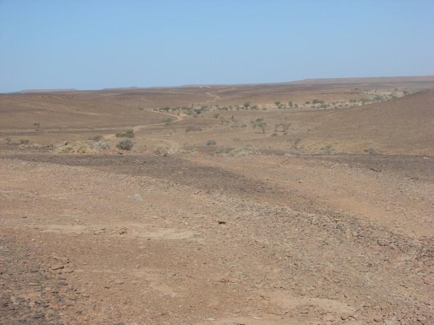retour maroc 2012 - Page 2 787180088