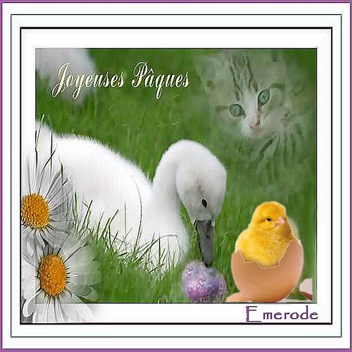 GALERIE 6 DIAMENJOS - Page 21 788458cartedepaquespaul2013