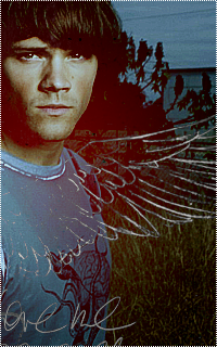 Jared Padalecki 798915Jared6