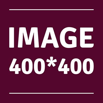 FICHE TYPE - Présentation 799841image400