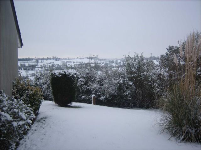 Mercredi 06 janvier 2010 - (Neige à Pont Farcy - 7 à 10 cm) 802569Jan06326