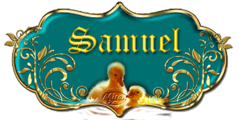 Nombres con S - Página 3 8032722Samuel