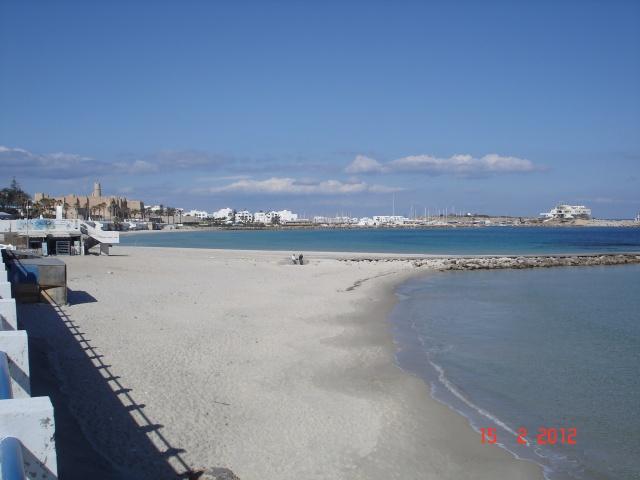 Les côtes algériennes sur Thalassa ce soir ! 804858DSC07300