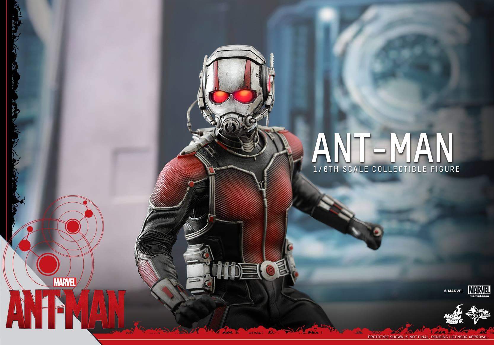 HOT TOYS - Ant-Man - Ant-Man 807275115