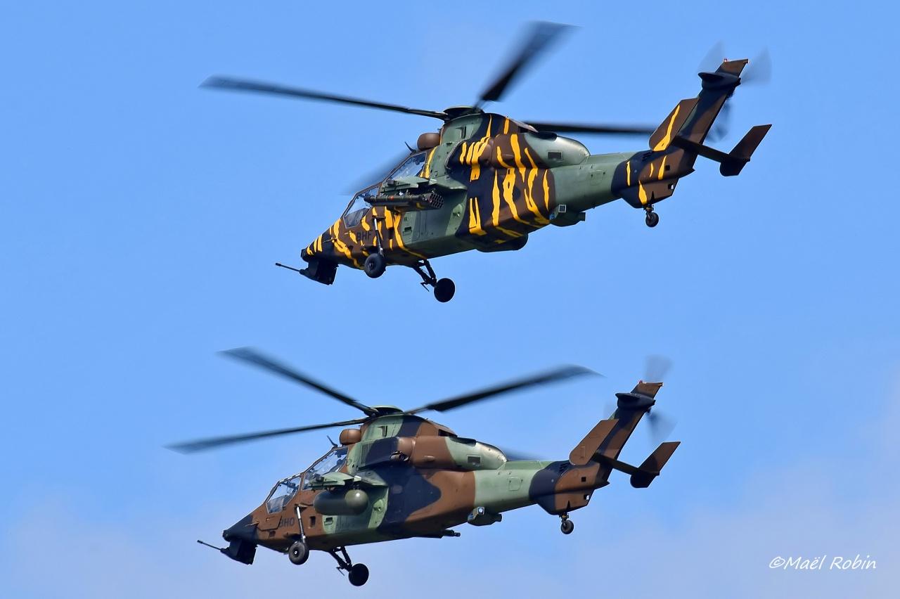 NATO Tiger Meet 2017 Landivisiau 809945landirns699filtered